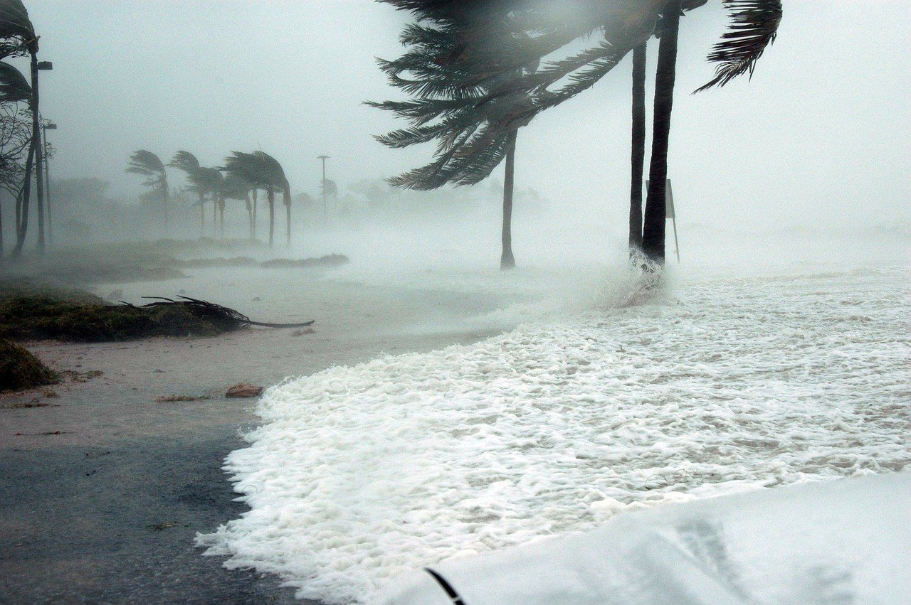 The effects of hurricanes and natural disasters on Port Charlotte home values