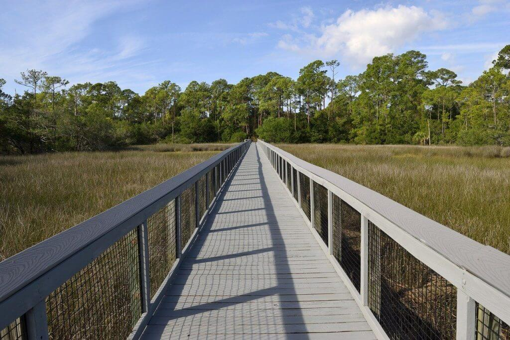 Picture of a boardwalk over a Florida marsh land